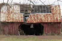 Decaying barn, near Pleasant Hill, N.C.