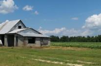Old barn, near Emporia, Va.