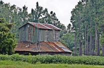 Barn, near Hyman, S.C.