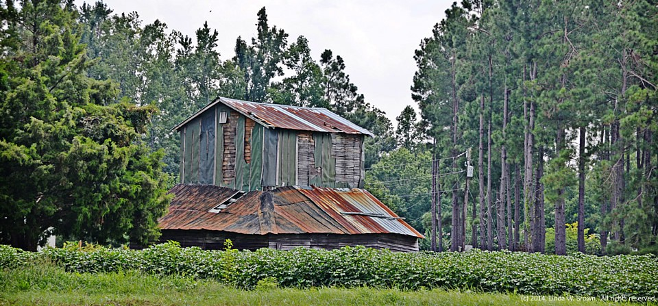Barn, near Hyman, S.C.
