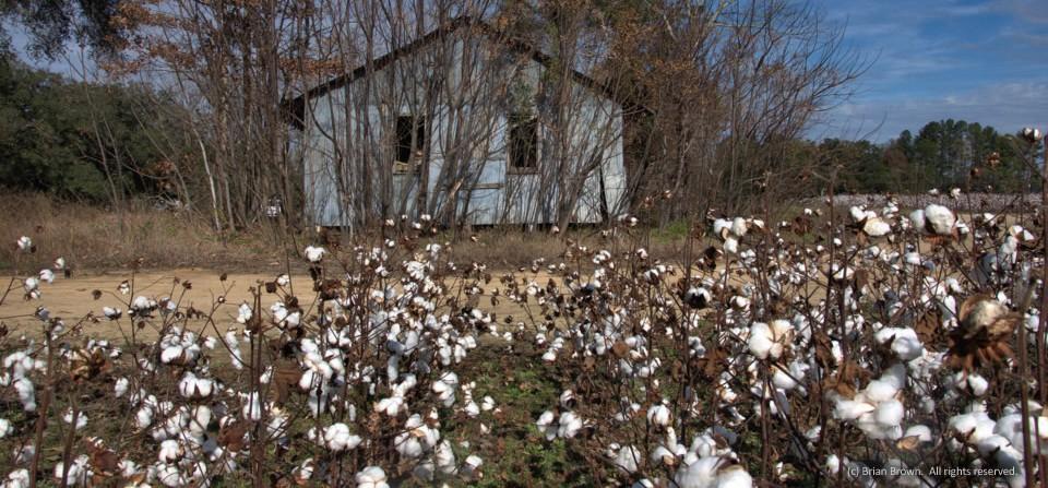 Metal farm building, Jenkins County, Ga.