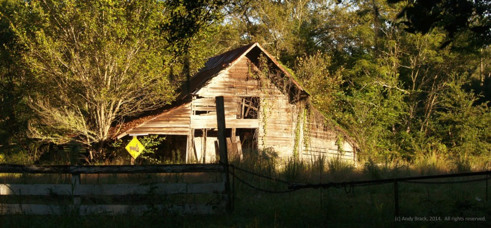 Old barn, Jacksonboro, S.C.