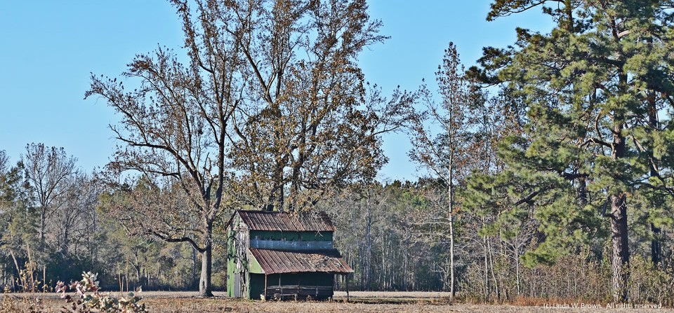 Barn, Clarendon County, S.C.