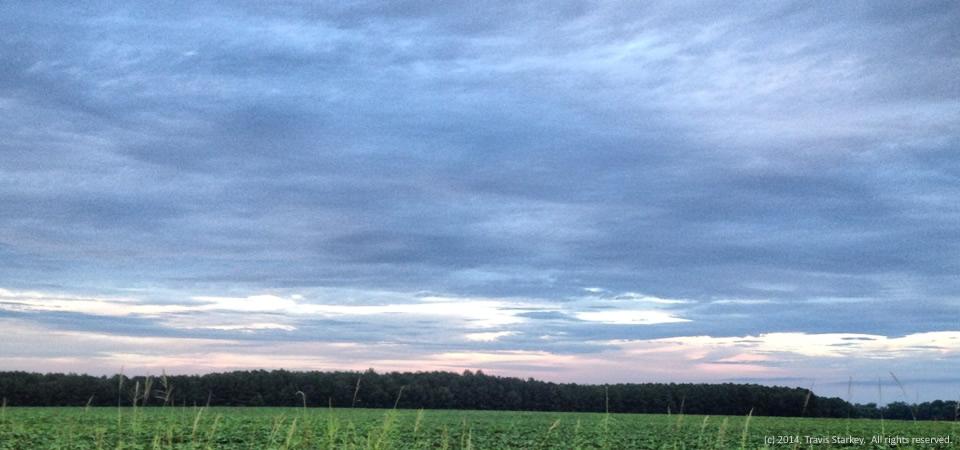 Green field, near Roper, N.C.