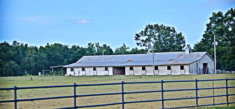 Stable, Williamsburg County, S.C.