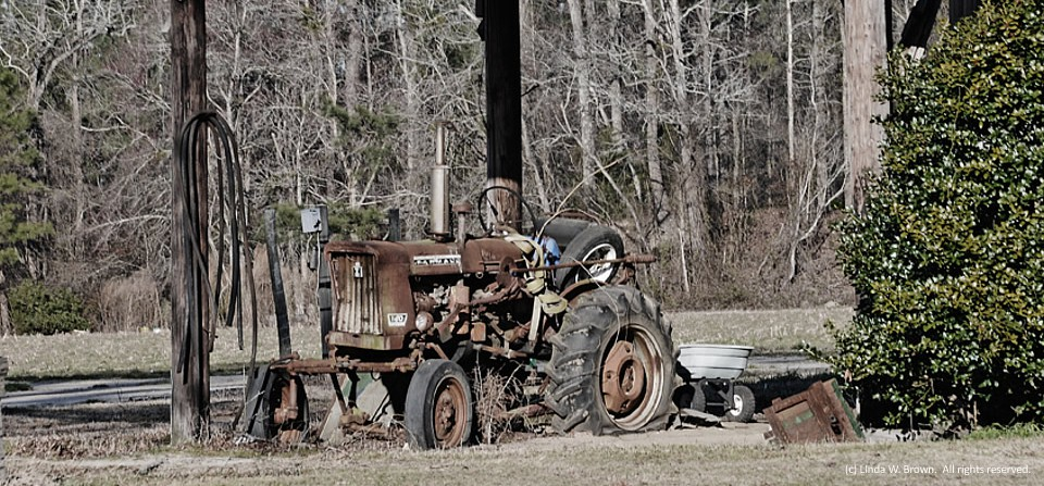 Flat out, Williamsburg County, S.C.