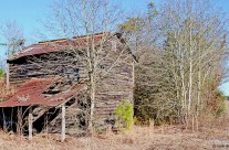 Old tobacco barn, Florence County, S.C.