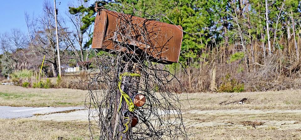 Rusty mailbox, Williamsburg County, S.C.