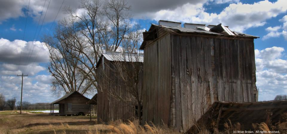 Tobacco barns, Tattnall County, Ga.