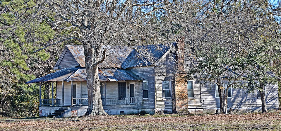 Empty house, Florence County, S.C.