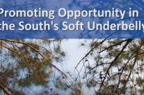 Video: Promoting opportunity (2013)